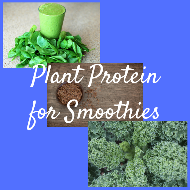 Plant Protein for Smoothies